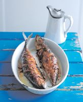 Mackerel Recipe
